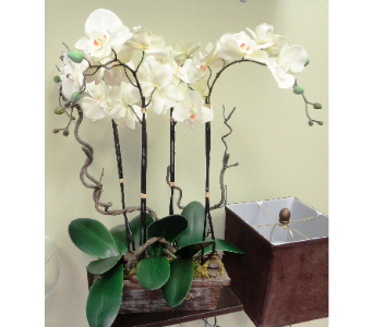 Faux Orchids and Branches  in Tampa FL, Buds, Blooms & Beyond