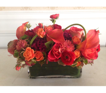 Before Sunset in Guilford CT, Guilford White House Florist