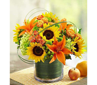 Sunburst Bouquet $49.99-$99.99 in Bradenton FL, Ms. Scarlett's Flowers & Gifts