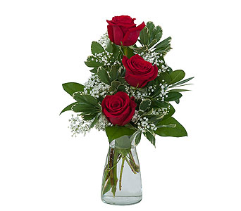 Simply Roses in Mount Morris MI, June's Floral Company & Fruit Bouquets