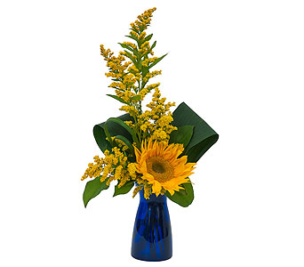 Simply Sunflower in Campbellford ON, Caroline's Organics & Floral Design