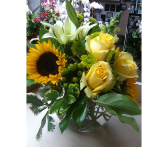 Bubble bowl of Sunshine in Rancho Santa Fe CA, Rancho Santa Fe Flowers And Gifts