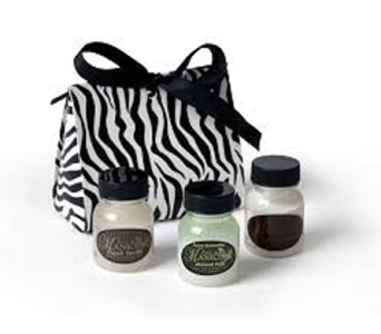 Mini Spa Purse - Zebra in Pensacola FL, Southern Gardens