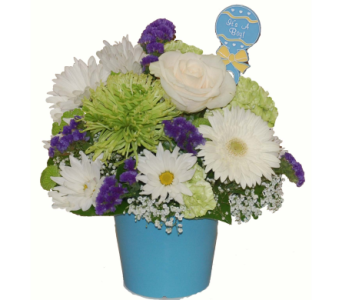 Flowers gift baskets for a baby in scarborough toronto north york baby blue bowl in scarborough on helen blakey flowers negle