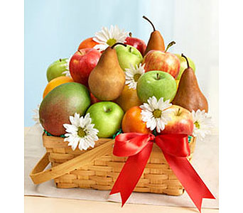 All Fruit Basket (L)