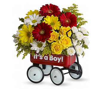 Baby's WOW! Wagon (Boy)
