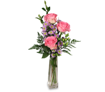 3 Pk Rose in Timmins ON, Timmins Flower Shop Inc.