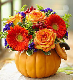 Pumpkin Petals in Round Rock TX, Heart & Home Flowers