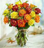 Rose Elegance� Premium Long Stem Autumn Roses in Round Rock TX, Heart & Home Flowers