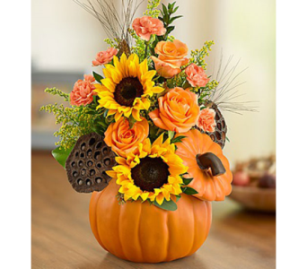 Pumpkins and Posies  in North Syracuse NY, Becky's Custom Creations