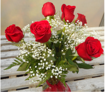 Classic Red Roses Half Dozen in Skowhegan ME, Boynton's Greenhouses, Inc.