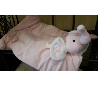 Plush Baby Blanket$69.99 in Mamaroneck - White Plains NY, Mamaroneck Flowers