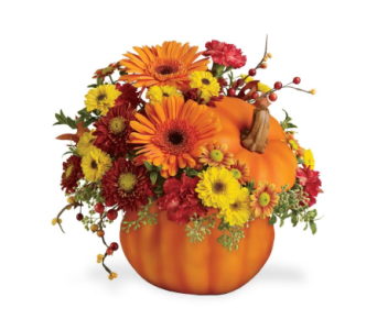 October Class-Big Rapids in Big Rapids MI, Patterson's Flowers, Inc.