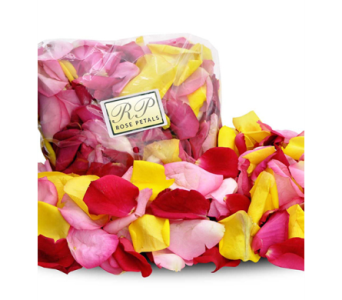 Rose Petals in Indianapolis IN, George Thomas Florist