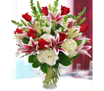 Passionate Love in Indianapolis IN, George Thomas Florist