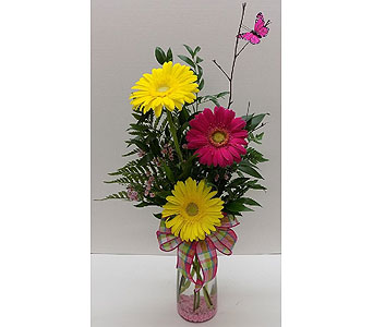 Gerbera Days in Timmins ON, Timmins Flower Shop Inc.
