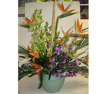 Tropical Arrangement in Blue Bell PA, Country Flower Shoppe