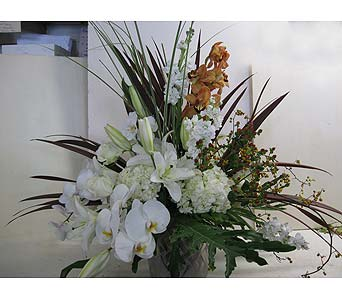 Lavish Orchid Arrangement in Blue Bell PA, Country Flower Shoppe