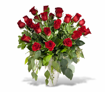 24 Premium Long Stem Roses in Aurora ON, Caruso & Company