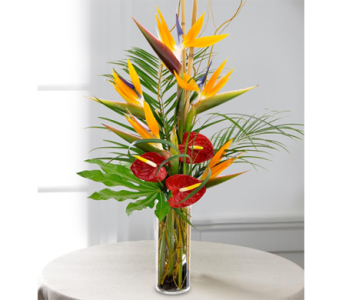 Tropical Paradise in Indianapolis IN, George Thomas Florist
