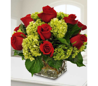 Roses and Hydrangea Dream in Indianapolis IN, George Thomas Florist
