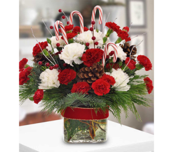 Candy Cane Celebration in Indianapolis IN, George Thomas Florist