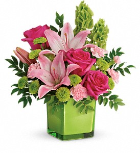 Teleflora's In Love With Lime Bouquet in Pekin IL, The Greenhouse Flower Shoppe
