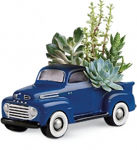 His Favorite Ford F1 Pickup in Santa Monica CA, Edelweiss Flower Boutique