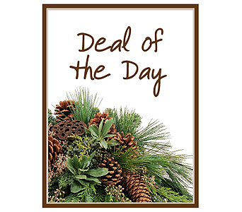 Deal of the Day - Winter in Asheboro NC, Burge Flower Shop