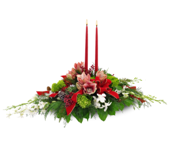 Christmas Orchid Centerpiece in Ferndale MI, Blumz...by JRDesigns
