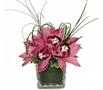 Cymbidium Centerpiece in Amherst NY, The Trillium's Courtyard Florist