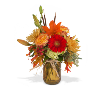Harvest Hues in St. Louis MO, Walter Knoll Florist