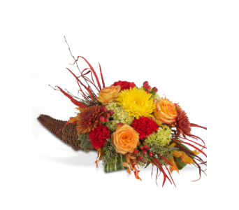 Count Your Blessings in St. Louis MO, Walter Knoll Florist