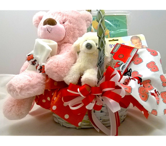 NC State Baby Basket in Cary NC, Cary Florist