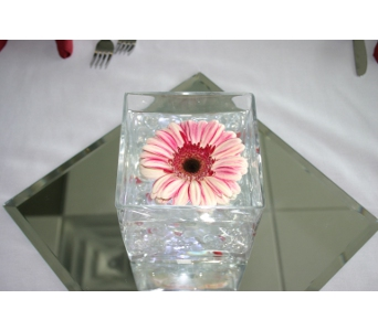 Gerbera Daisy with Mirror Centerpiece in Cary NC, Cary Florist