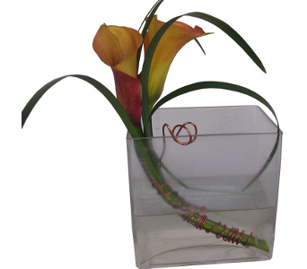 Double Calla Cube Centerpiece in Cary NC, Cary Florist