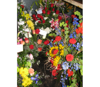 DMF-FF in Bismarck ND, Dutch Mill Florist, Inc.