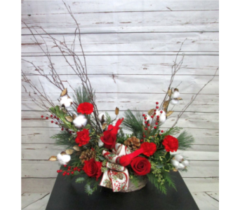 CHRISTMAS FEATURE in Salisbury MD, Kitty's Flowers
