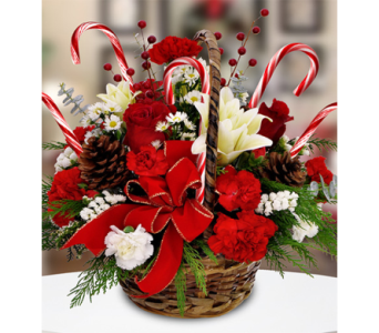 Candy Cane Basket in Indianapolis IN, George Thomas Florist