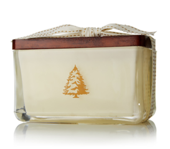 Frasier Fir Northwoods by Thymes 2-Wick Candle in Little Rock AR, Tipton & Hurst, Inc.