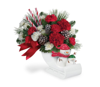 Send A Hug-Sleigh Ride-Local Delivery Only in Big Rapids MI, Patterson's Flowers, Inc.