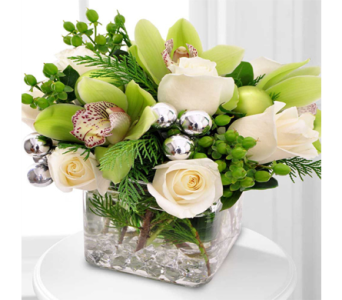 Silver Bells in Indianapolis IN, George Thomas Florist