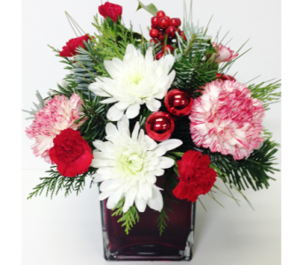 Peppermint Christmas Cube Arrangement in Wyoming MI, Wyoming Stuyvesant Floral