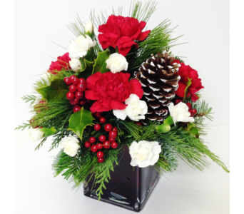 Christmas Joy Cube Arrangement in Wyoming MI, Wyoming Stuyvesant Floral