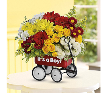 Baby's Wow Wagon in Indianapolis IN, George Thomas Florist
