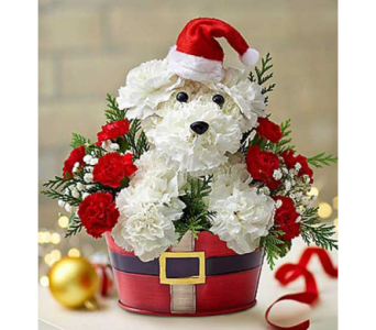 SANTA PAWS in Yelm WA, Yelm Floral