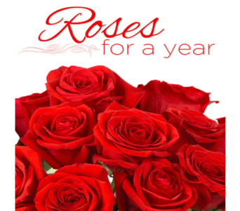 Roses For a Year! in Indianapolis IN, George Thomas Florist