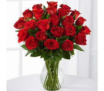 24 Red Roses in Indianapolis IN, George Thomas Florist