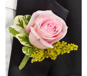 Pink Rose Boutonniere in Indianapolis IN, George Thomas Florist