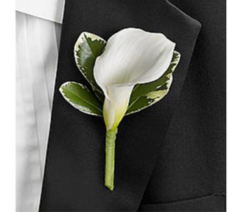 White Calla Boutonniere in Indianapolis IN, George Thomas Florist